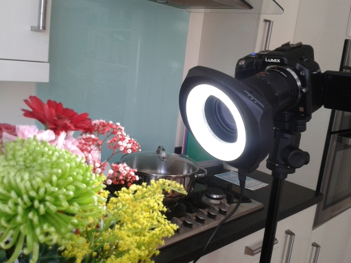 Panasonic Limix G5 with the LLC Macro Ring Light.